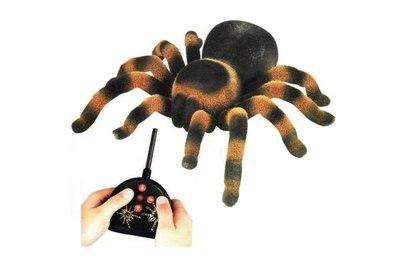 Радиоуправляемый паук-тарантула EL150 Edu-Toys