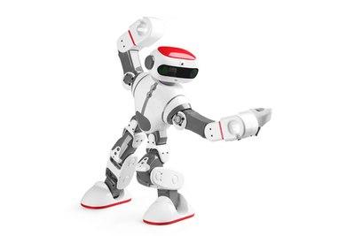 Робот WL Toys Dobi - F8