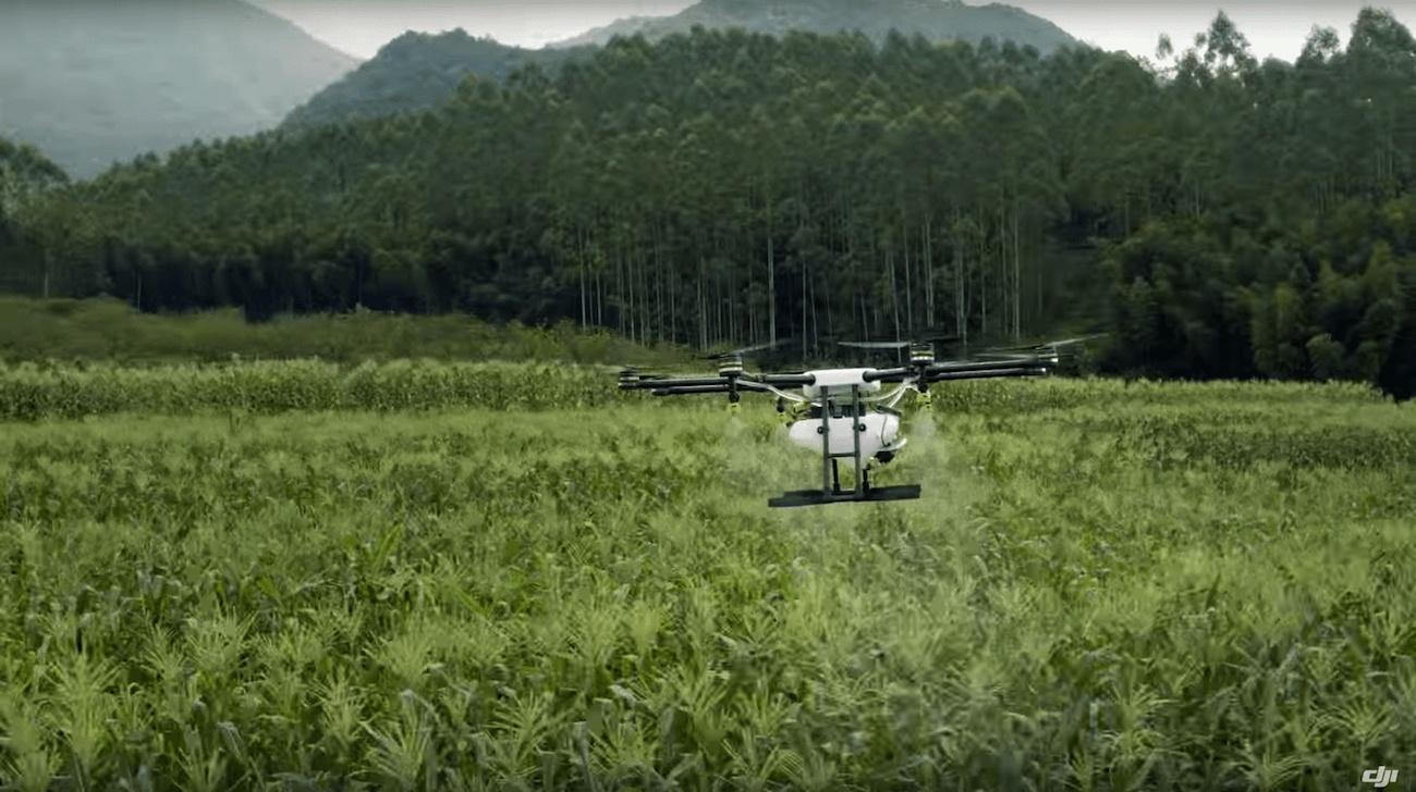 Квадрокоптеры для работы в сельском хозяйстве купить мавик эйр наложенным платежом в екатеринбург